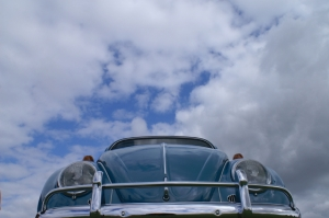 beetle blue sky field of dreams