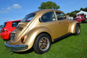 dubs in't dales beetle gold resto