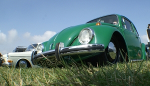 beetle vw green grass skeg vegas