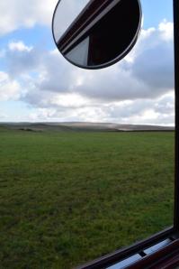 Ruby vw splitscreen panel van Harwes farm