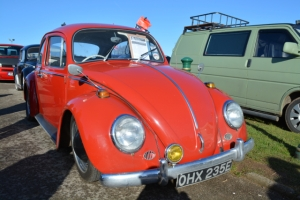 beetle vw ruby red dubfreeze