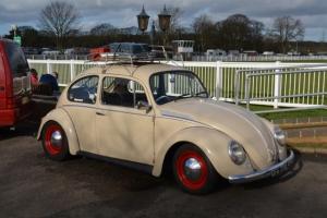 dubfreeze beetle vw
